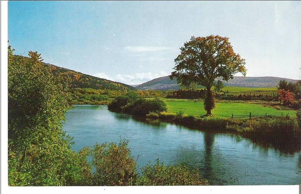 margaree forks bridge pool  margaree river  cabot trail